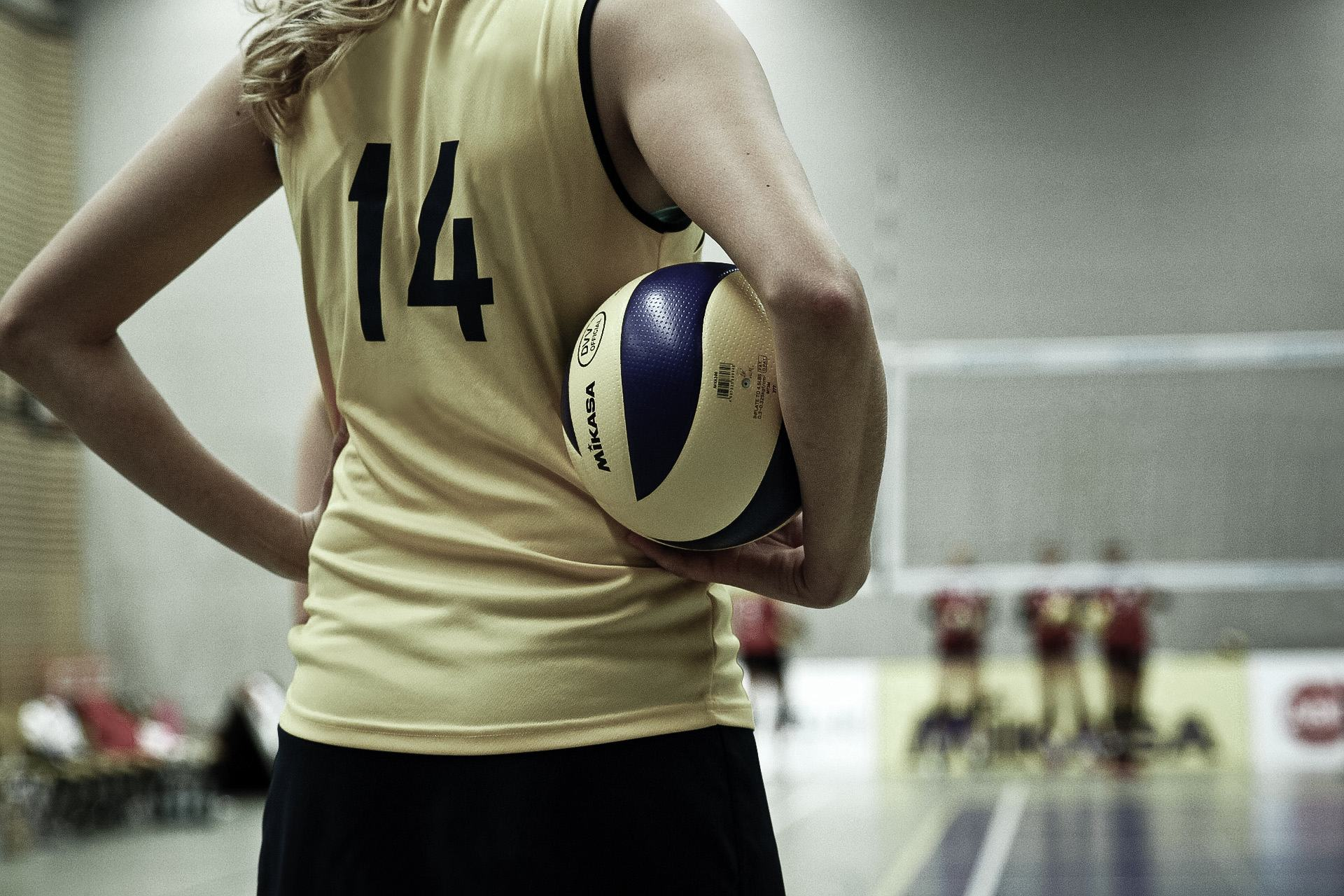 volleyball header image